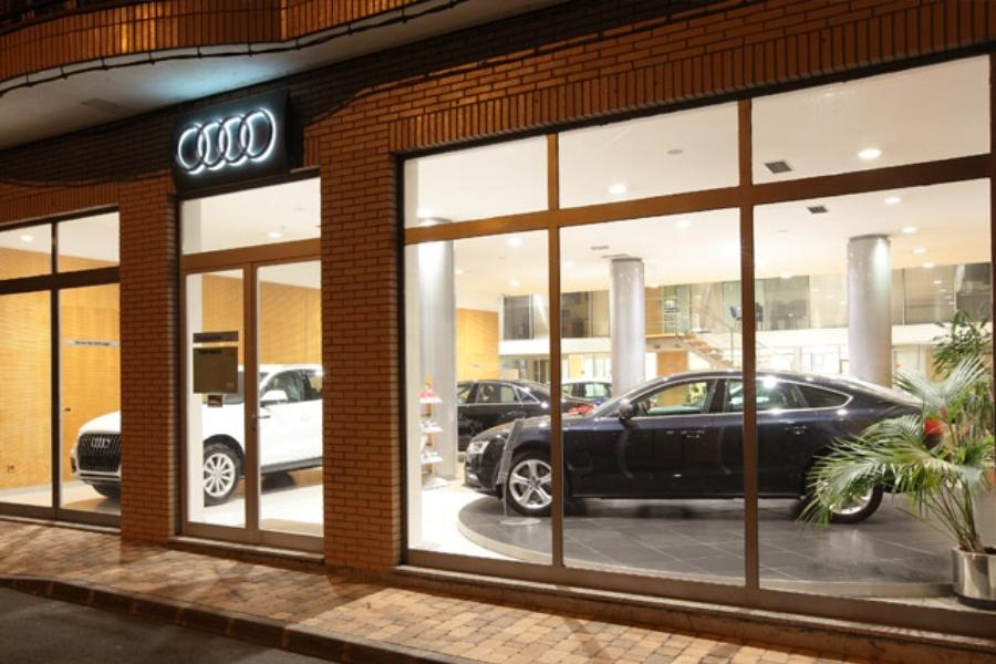 Telenauto Audi Astorga