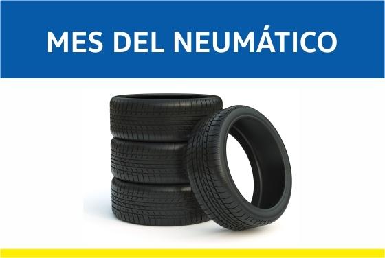 Mes del Neumático